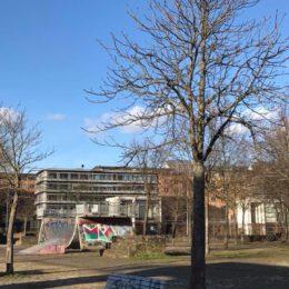 Saarbrücken, Bürgerpark Hafeninsel