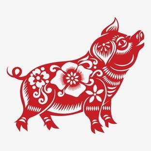 In 2019 werden wir Schwein haben